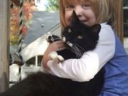 Nemoci přenosné z domácích zvířat na děti (lidi)